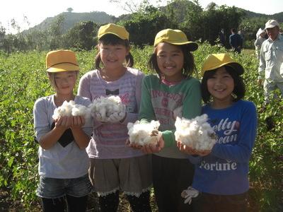 あさぎり収穫3.JPG